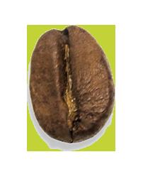 Café du Pérou grain